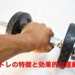 スロトレ(スロートレーニング)での成長ホルモン分泌と筋トレの適正強度